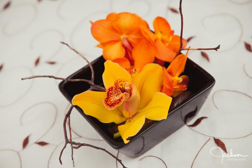 orange and brown orchids
