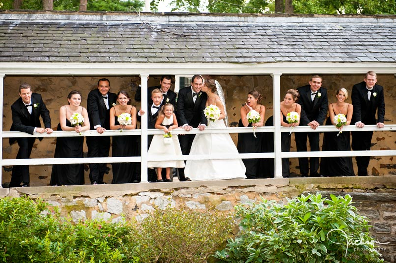 bridal party on fence