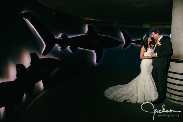 Baltimore_Aquarium_Wedding_23